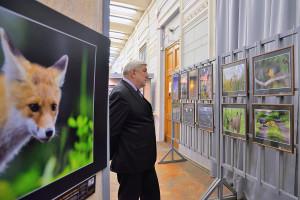 3_ открытие выставки Клуба фотоохотников