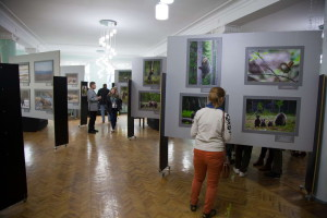 К. Шатенев_Выставка в Великом Новгороде_2