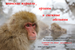Shatenev_Konstantin